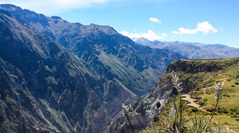 Arequipa and Colca Canyon Tour