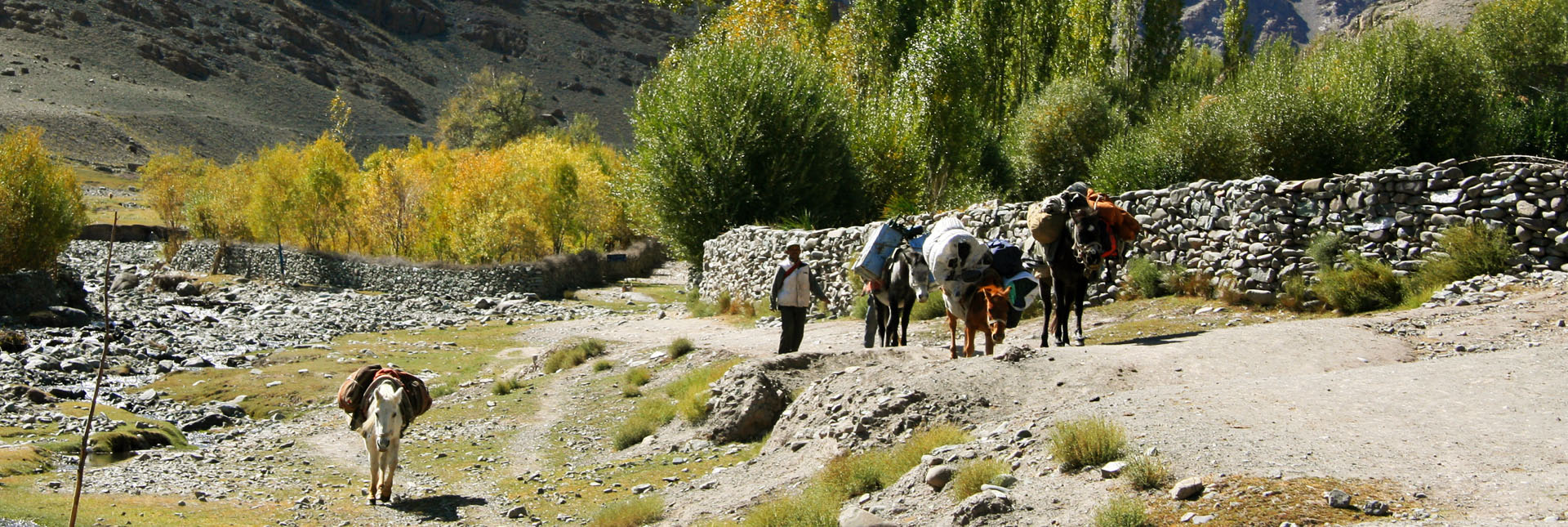 The trail from Stok village