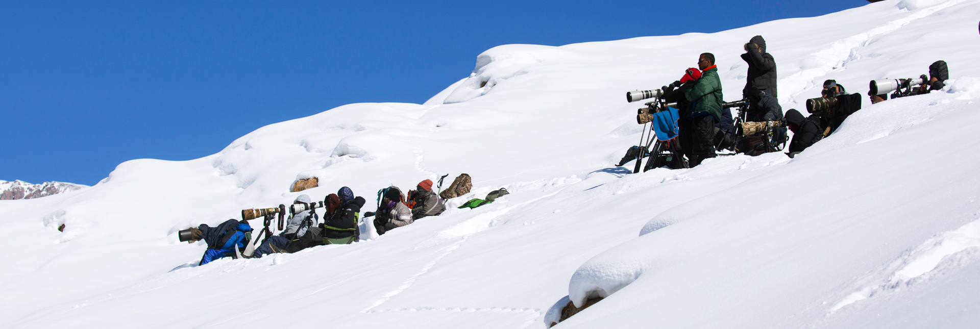 Photographers waiting and ready for the view of a snow leopard