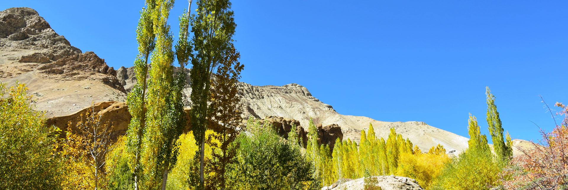 Stunning views during the trek